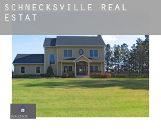 Schnecksville  real estate